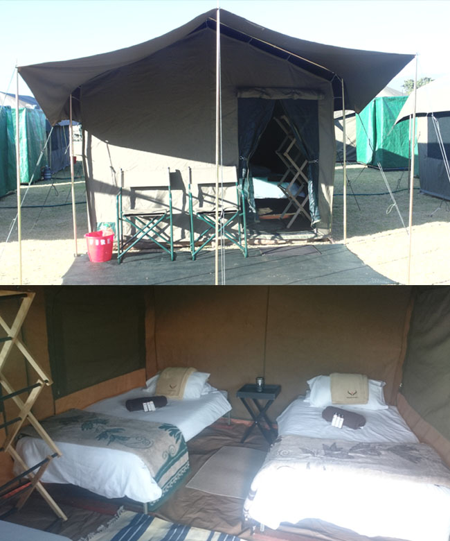 <strong>OPTION 2 </strong>GLAMPING CAMPING